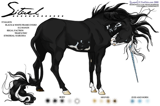Sitael Ref -- Unicorn by werexmutt