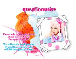Questionnaire by Takisse