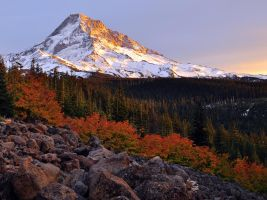 Mount Hood Autumn Sunset by greglief
