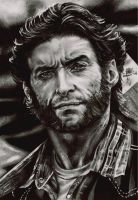 Wolverine by FreedomforGoku