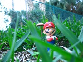 Mario in the grass by FJOJR