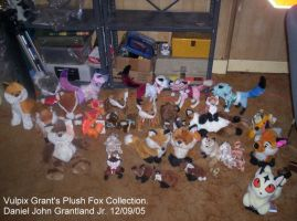 Vulpix Grant's Plush Foxes by vulpixgrant