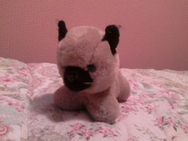 Stuffed Siamese Toy by wittlecabbage