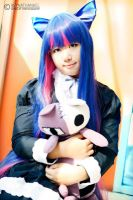 Anarchy Stocking by rinsuzume