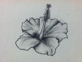 Hibiscus Flower Tattoo Design by thelinesthattied