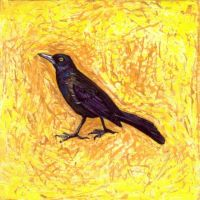 """""""common grackle"""" by micahsherrill"""