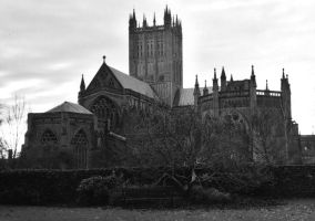 Wells Cathedral B_W by EarthHart