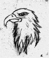 Eagle drawing by fraser0206