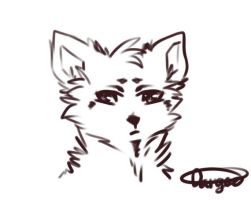 Cat Head Sketch by DangerousBallOfFur