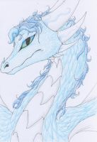 Selene the Ice Dragoness by meroaw