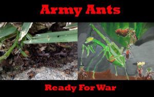 Red Army Ant Ready for War by Ghost141