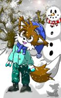 Winter Time by BabyChrisFox