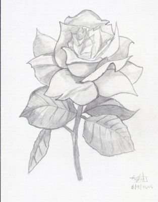 the dark tower - rose by semajtwin