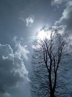 The tree and the clouds by jemms2012