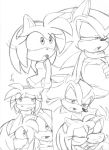Shadow and Amy Rose: Brother:Sister Relationship by Narcotize-Nagini