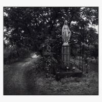 Patroness of the vineyard by Dionisic