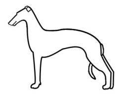 Whippet Lines FOR MY USE ONLY by HiddenParadise1
