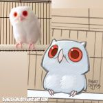 Owl Reference by Banzchan