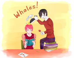 Whales~ by BreLolli