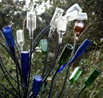 Bottle Tree by alimuse
