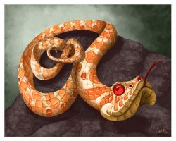 Hognose Snake Caricature by CharReed