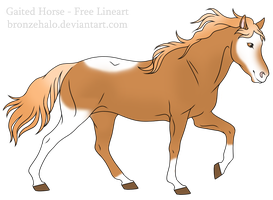 Horse - Adoptable (Closed) by Adopts-Only