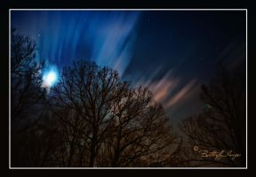 Night Sky in all it's glory. by ButterflyImage
