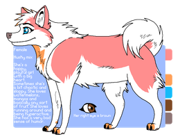 Kat reference sheet by kwinzilla