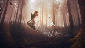 Forestal Soul by Andasolo