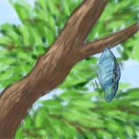 The Patient Pupa by Kagitsune