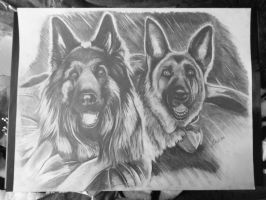 Dogs by Ch0c0wlate