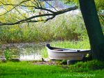 In the park ____ by burcyna