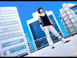 Mirror's Edge - Repeal by cambiocosplays