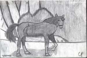 Horse sketch by Theory-Of-Existence