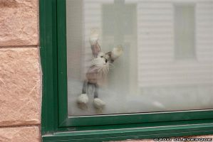 Wanting out by imonline