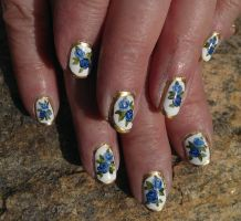 20141206 - Blue China Roses by m-everhamnails