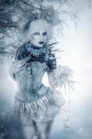 Snow Queen by pixelmixtur