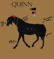 Quinn Ref by frenchly