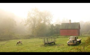 Pure Country Morning by DennisChunga