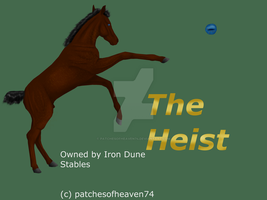 The Heist-Foal by patchesofheaven74