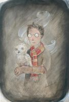 Harry Potter by miorats