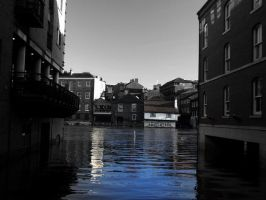 The king's arm's in flood . by velar1