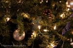 Christmas Tree Decorations by photog
