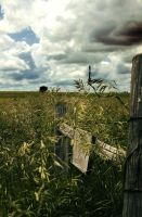 Kansas Fenceline by BAGilligan