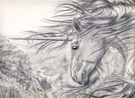 The unicorn of the mountains by Bacilla