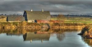 Ebey Island Farm by Stolte33