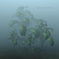 Ludus silva: plants in the mist by jayelinda