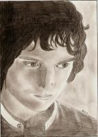 frodo from lord of the rings by eudoxiada