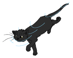 RiverClan - Beetlenose by WildpathOfShadowClan