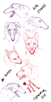 Dog studies by Edenfur